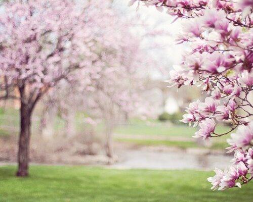 Weekend majowy – 4 dni